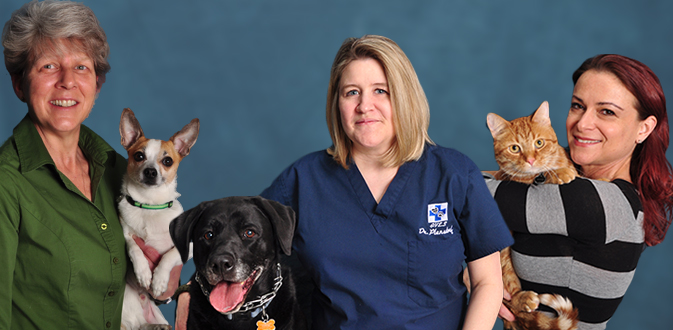 Caring and Dedicated Staff at Affiliated Veterinary Emergency Service