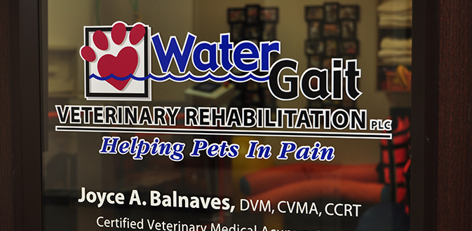 Affiliated Veterinary Emergency Service
